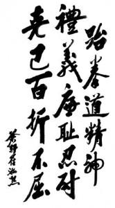 I cinque principi del Taekwondo